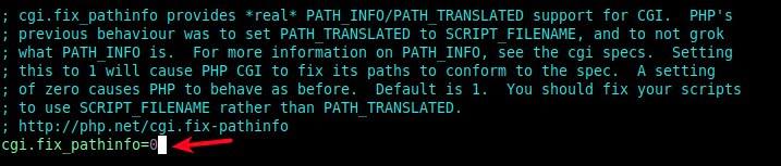 fix cgi path info on nginx