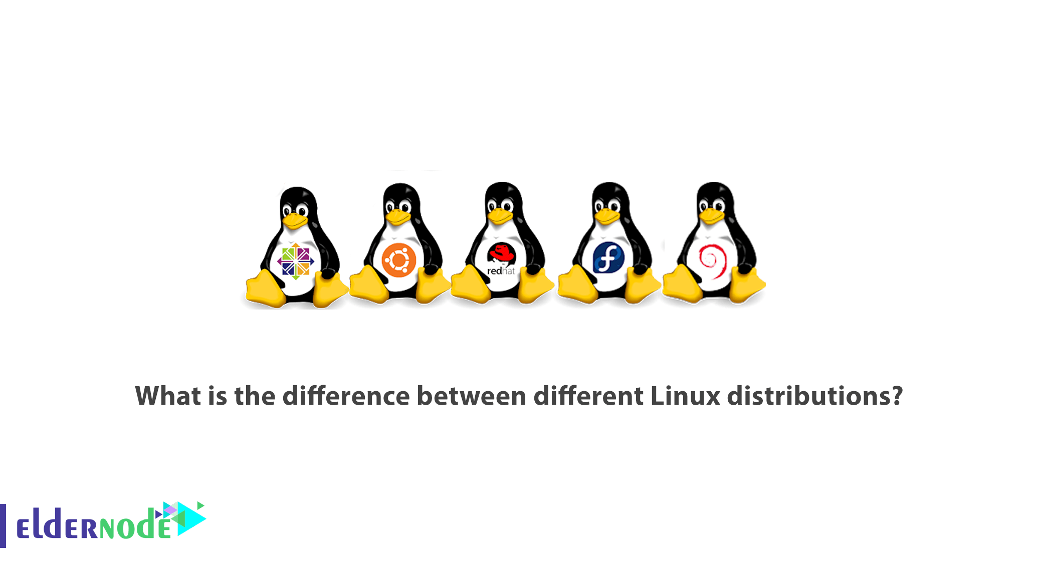 What is the difference between different Linux distributions