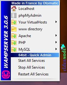 how to run wamp server on rdp admin