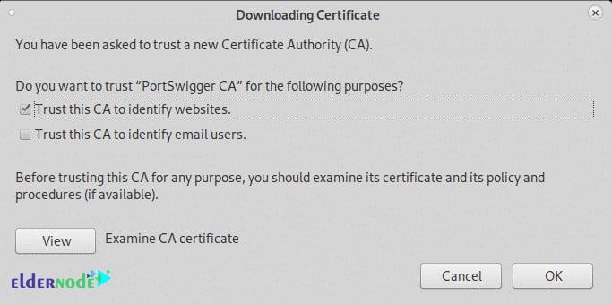 Trust this CA to identify websites