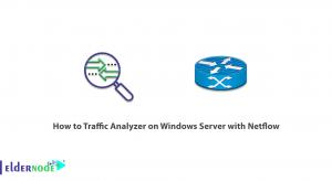 How to Traffic Analyzer on Windows Server with Netflow