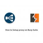How to Setup proxy on Burp Suite
