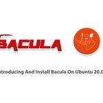 Introducing And Install Bacula On Ubuntu 20.04