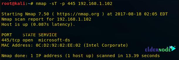 tcp scan on nmap