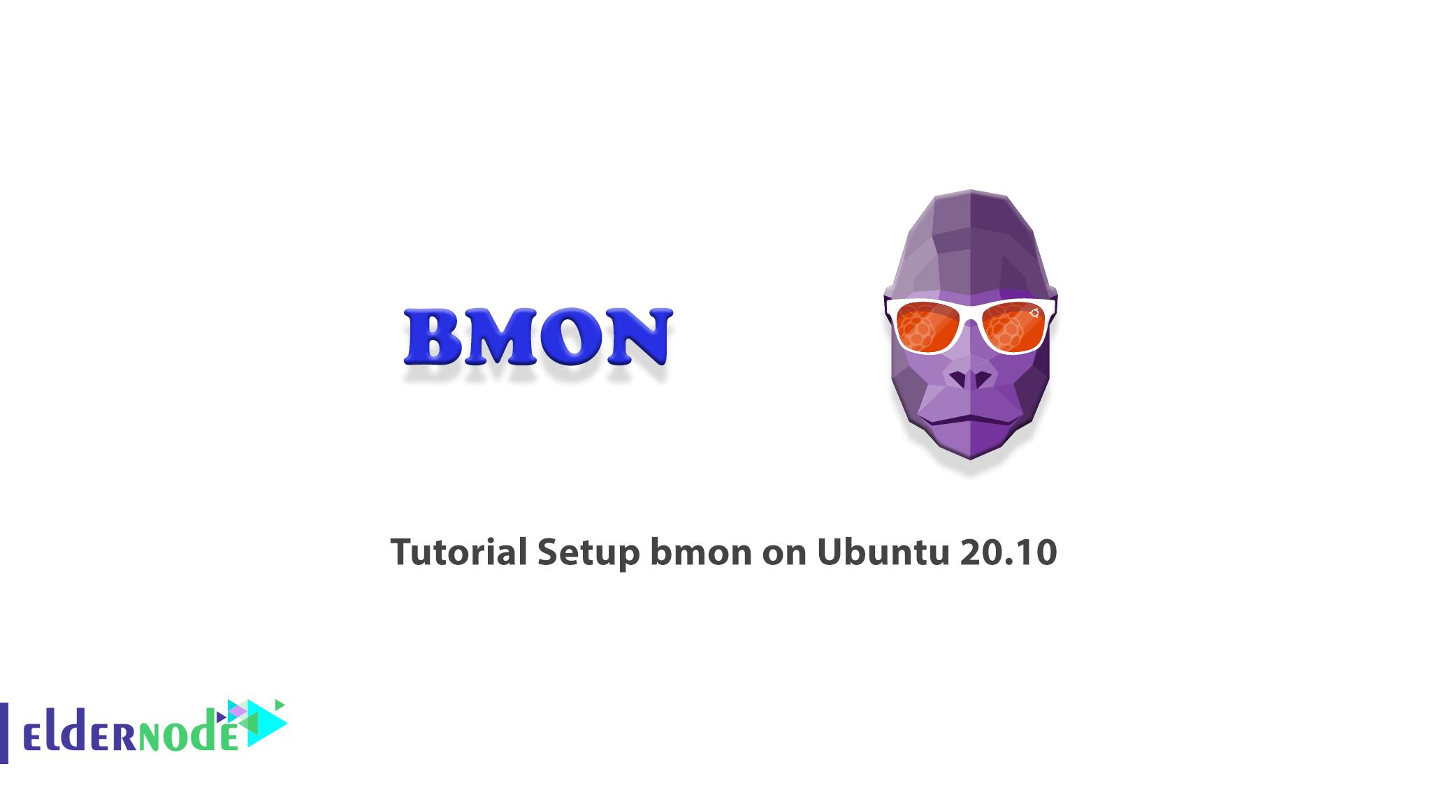 Tutorial Setup bmon on Ubuntu 20.10