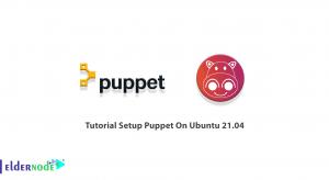 Tutorial Setup Puppet On Ubuntu 21.04